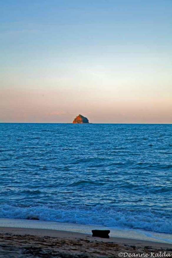 Double Island, Palm Cove