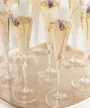 Lavender & Champagne