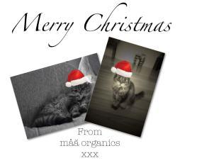 Merry Christmas from maa organics
