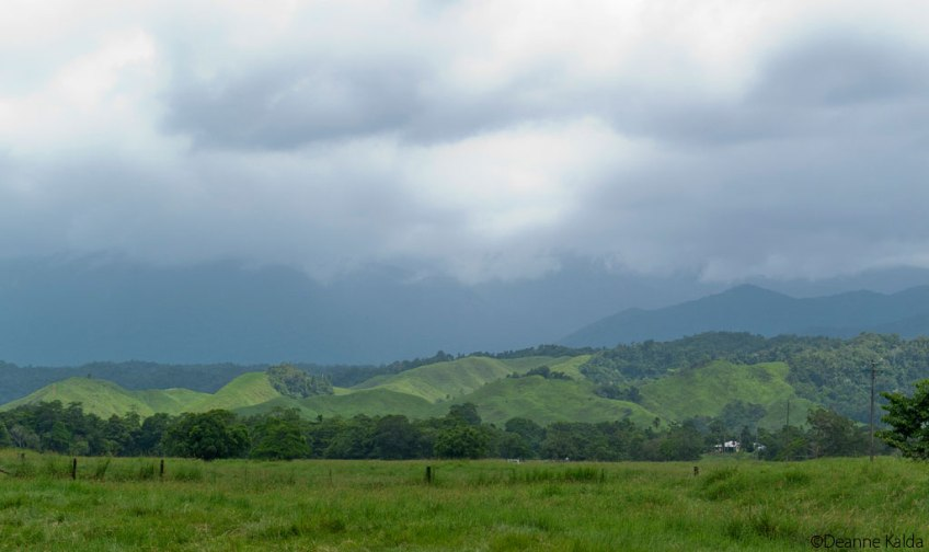 Daintree Mountains
